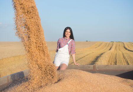 cosechadora: Bastante joven de pie en remolque mientras combinar cosechadora de granos de trigo que lanza en la pila Foto de archivo