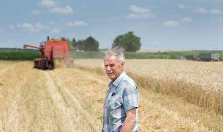 cosechadora: Retrato de los agricultores hombre mayor en camisa de cuadros que se coloca en campo de trigo dorado y cosechadora trabaja en segundo plano