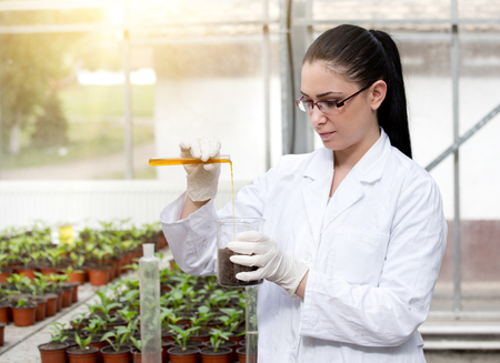 Young woman biologist in white coat holding test tube with orange liquid over flower pots in greenhouse Stock Photo