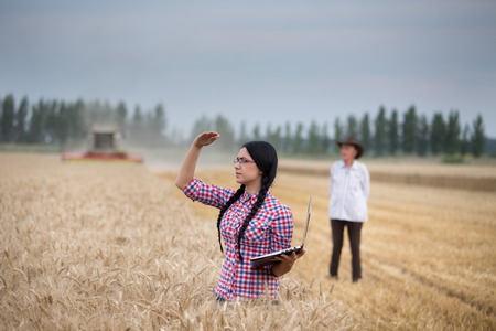 cosechadora: Young woman with laptop standing on wheat field and looking into distance while combine harvester working in background