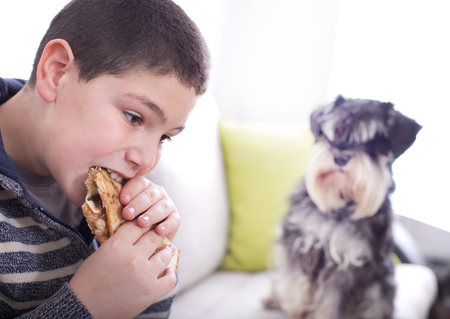 obedient: Obedient dog looking at hungry boy eating pizza slice