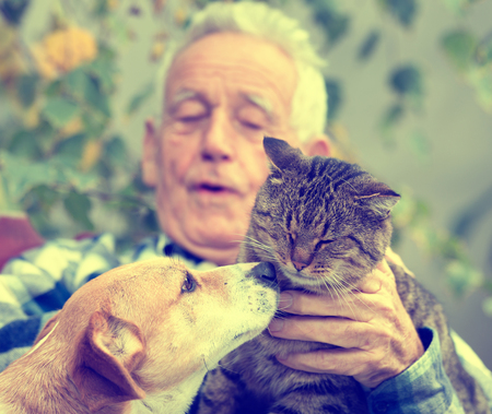 purring: Close up of dog and cat kissing in old mans lap in garden