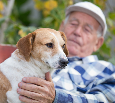 Senior man sitting on bench and cuddling his dog in courtyard