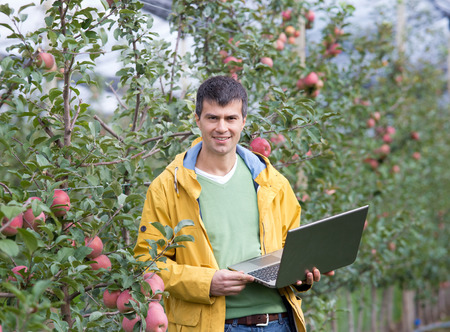 agronomist: Attractive agronomist with laptop standing in apple orchard and looking at camera Stock Photo