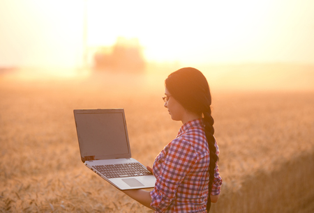 agronomist: Young woman agronomist with laptop standing in ripe wheat field while combine harvester working in background Stock Photo