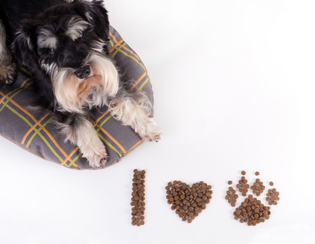 Cute dog lying beside text I love dog drawn in symbols with his dry food