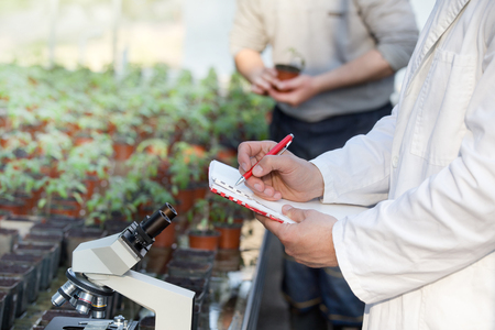 Hands of biologist in white coat writing notes about experiments on sprouts and microscopic research in greenhouse. Plant protection concept Stock Photo
