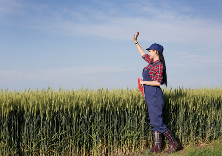agronomist: Pretty young farmer woman standing in front of green wheat field and waving hand