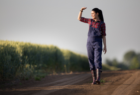 prety: Young pretty farmer girl standing in front of green wheat field and looking in distance with hand blocking sun