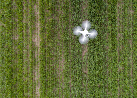 Vista superior de aviones no tripulados volando sobre campo de trigo verde en la tecnología . la ecología agrícola en la industria agrícola Foto de archivo - 76545804