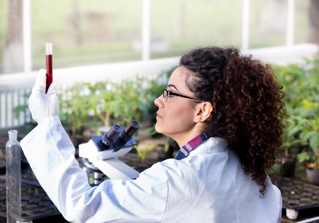 Young woman biologist holding test tube with chemicals in front of microscope and sprouts in greenhouse. Plant protection concept