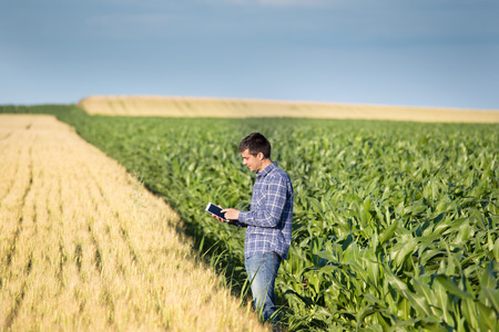 Young handsome agriculture engineer standing in field with tablet in early summer