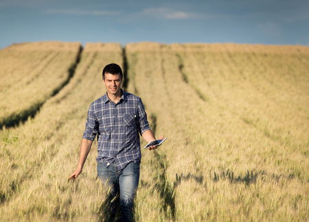 Young handsome farmer with tablet walking in wheat field in early summer
