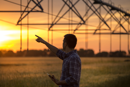 Young handsome farmer with tablet standing in wheat field at sunset with irrigation system in background Stock Photo