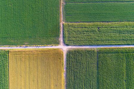 黄色と緑の色の異なる作物の農業区画の抽象的な幾何学的図形。空撮をドローン フィールドの真上から撮影します。 写真素材