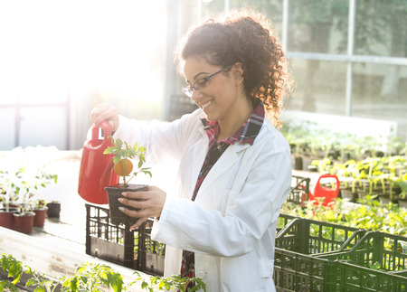 Young pretty woman biologist watering seedlings in flower pots in greenhouse. Plant care and protection concept Stock Photo