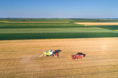 두의 공중 이미지 황금 밀밭에서 일하는 수확기를 결합합니다. 여름 농작물 수확