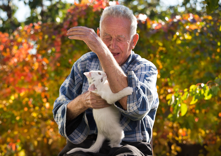 Senor man playing with young white cat in garden. Playful baby animal biting mans hand and scratching his wrinkled skin