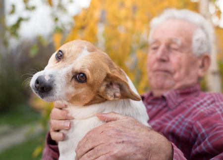 Cane sveglio che stringe a sé sulle ginocchia del vecchio nel parco in autunno. Pet amore e cura concetto. Terapia alternativa