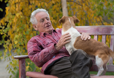 Senior man cuddling cute dog on bench in park with yellow tree in background in autumn. Pet love and care concept. Alternative therapy