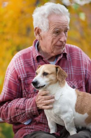 Senior man sitting in park in autumn with cute dog in lap and yellow tree in background. Pet love and care concept. Alternative therapy