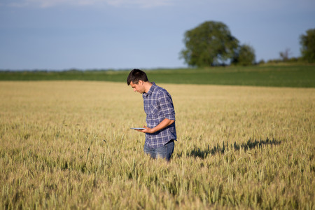 Young handsome farmer with tablet standing in wheat field in early summer