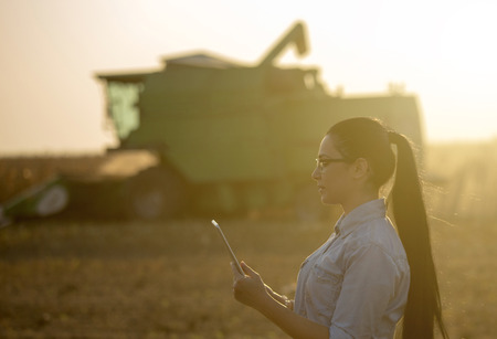Pretty young woman with tablet standing in soybean field with combine harvester working in background Stock Photo