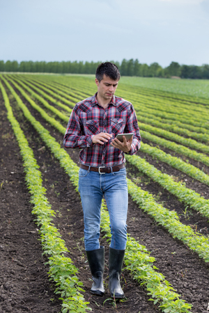 Young handsome farmer with tablet walking in soybean field in spring. Agribusiness and innovation concept Stock Photo