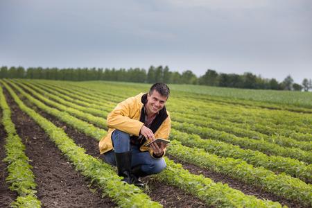 Joven agricultor guapo con tableta en cuclillas en campo de soja en primavera. Concepto de agroindustria e innovación