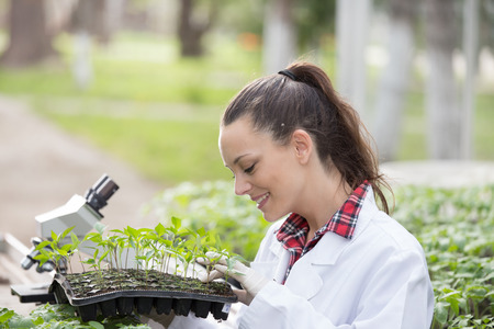 Young pretty agronomist in white coat holding plant tray with seedlings in greenhouse