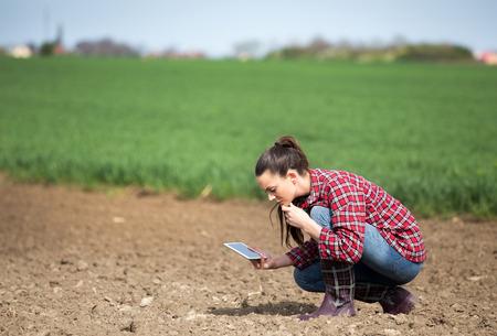 Junge hübsche Bäuerin mit Tablette, die Bodenqualität auf Feld prüft Standard-Bild