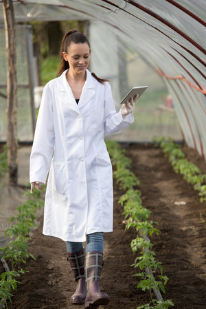 Young pretty woman agronomist in white coat with tablet supervising seedlings in greenhouse. Plant care and protection concept