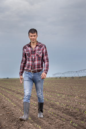 Handsome farmer with tablet walking in corn field in springtime with irrigation system in background Stock Photo