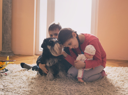 Boy and girl playing with toys and dog on carpet in living room beside window