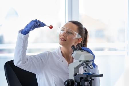 Woman scientist testing cherry tomato in laboratory with microscope