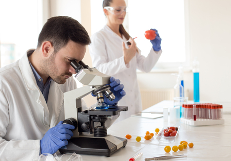 Two scientists doing  research with vegetables in lab with microscope