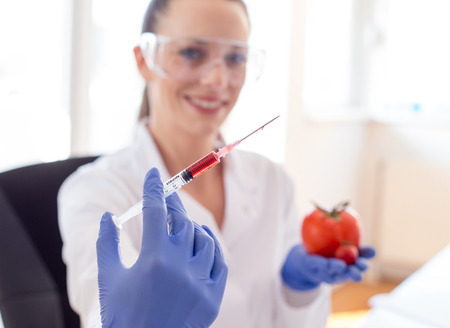 Young woman scientist doing research on tomato in laboratory. Close up of syringe for vegetable ripening Stock Photo