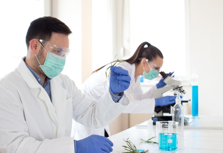 Two biologists analyzing seedlings in laboratory with microscope. Biotechnology, plant care and protection concept