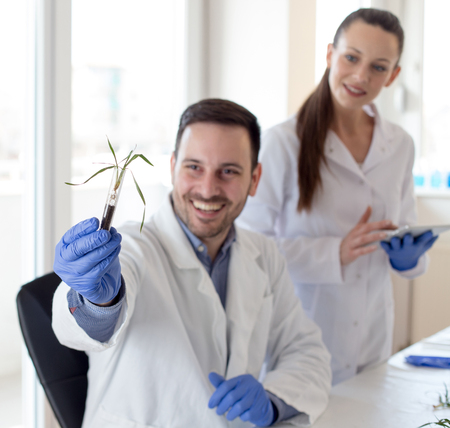 Two biologists analyzing seedlings growth in test tube in laboratory.  Biotechnology, plant care and protection concept
