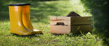 Crate with soil and gumboots on grass in backyard. Gardening equipment for maintenance Stock Photo