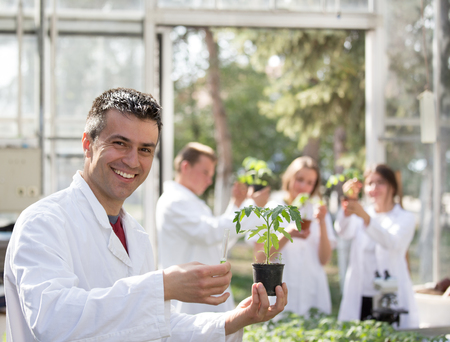 Handsome man agronomist holding seedling in flower pot in greenhouse with biologists in background. Plant protection and productivity improvement concept