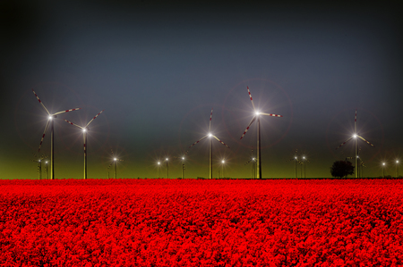 Wind turbine farm in red field by night. Renewable energy sources concept