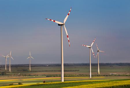 Farma wiatrowa w polach rzepaku żółtego w okresie wiosennym. Koncepcja odnawialnych źródeł energii