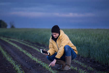 Young handsome farmer with tablet squatting in corn field in spring. Agribusiness and innovation concept Stock Photo