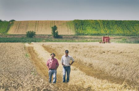 Two farmers standing on wheat field at harvest Archivio Fotografico - 125144645
