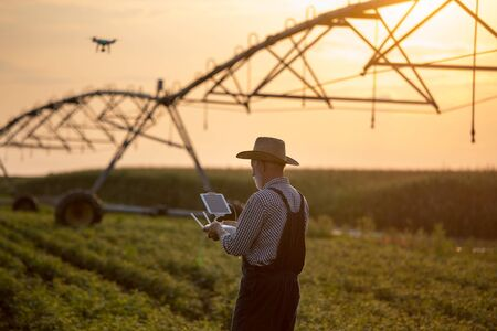 Old farmer with hat holding remote control for drone flying above soybean field with irrigation system in summer Stok Fotoğraf