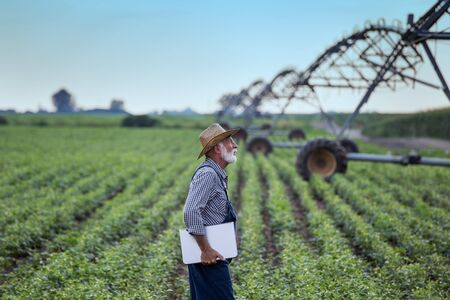 Senior farmer with laptop standing in front of irrigation system in soybean field