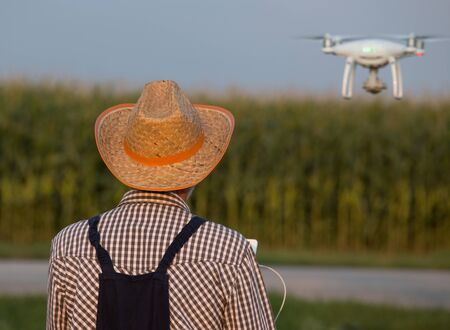 Rear view of farmer with straw hat driving drone in corn field in summer time