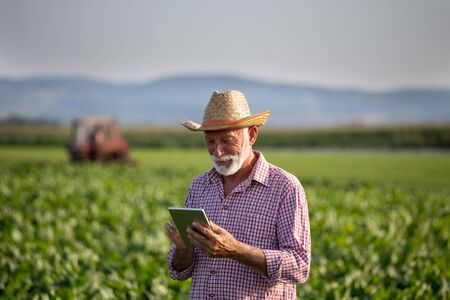 Senior farmer with hat standing in soybean field and holding tablet. Tractor spraying crops in background