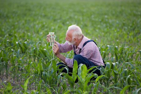 Senior farmer squatting beside rain gauge in corn field
